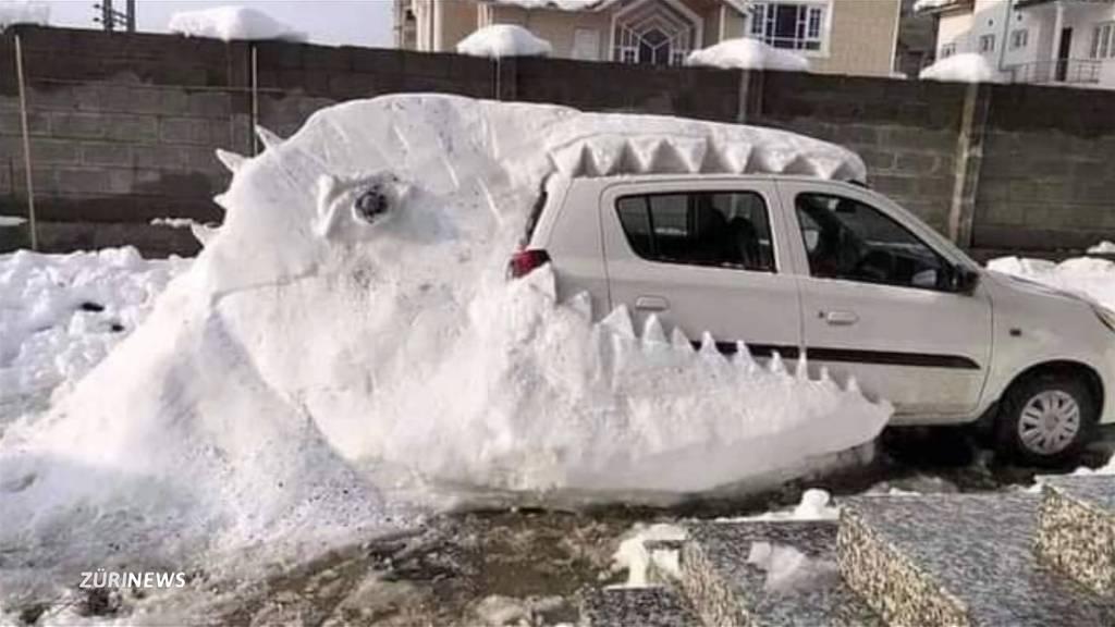 Der Schnee weckt das Kind im Mann