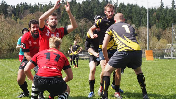 Rugby Cup der Hausen Baboons
