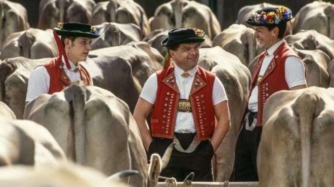 700 Trachten existieren in der Schweiz; eine davon ist die Appenzeller Tracht – wie hier beim Alpabzug. Foto: Keystone