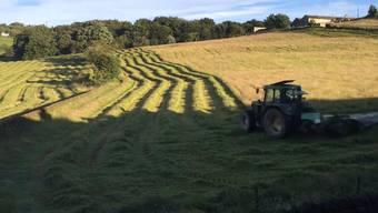 Ganz schön schnell und ganz schön präzise: Traktor mäht Wiese im Zeitraffer.