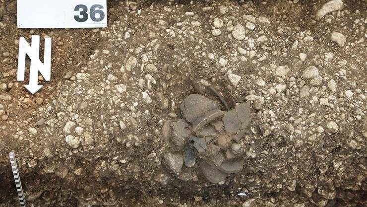 Eine neuentdeckte Grube aus der späten Keltenzeit (ca. 150–50 v. Chr.) mit sorgfältig deponierten Keramikscherben.