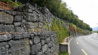 Entlang der Trimbacherstrasse wird der bestehende Zaun durch einen modernen Steinschlagschutzzaun ersetzt.