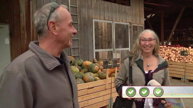 Quizzenswert beim Erlebnisbauernhof Jucker Farm