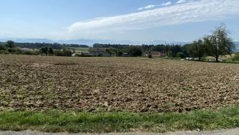 Die Parzelle Juchächer in Oberwil-Lieli soll eingezont werden.