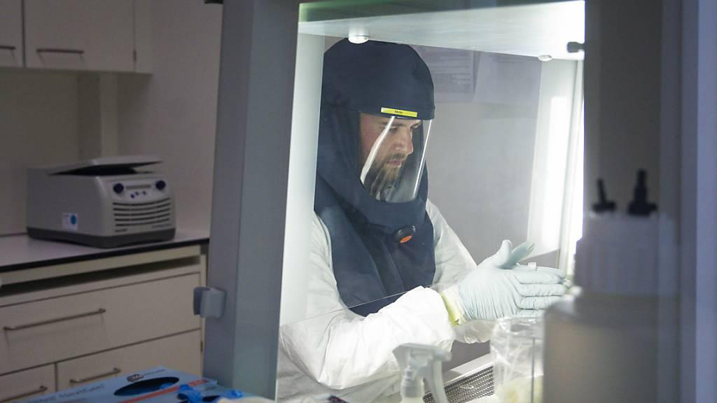Die diffizile Arbeit im Berner Biosicherheitslabor mit Coronaviren