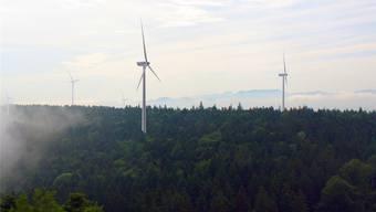 Lukrativ für die Waldeigentümer: Der geplante Windpark der IWB auf dem Chall.