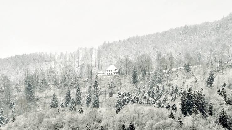 Im November steigen die Chancen auf weisse Wälder im Aargau.