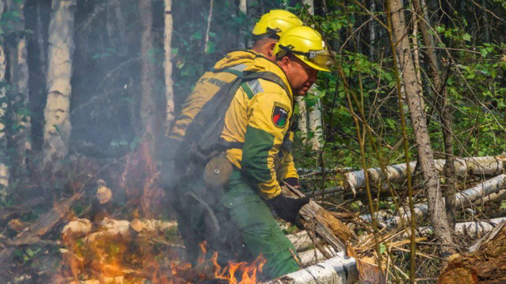 Erste Erfolge im Kampf gegen Waldbrände in Sibirien