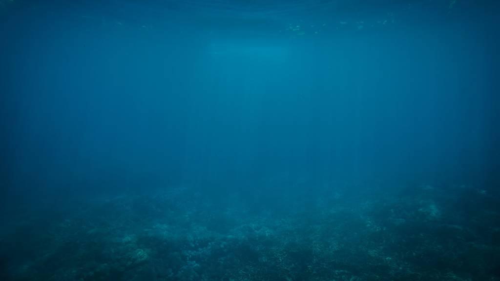 Ökumera, Oekumera – Unterwasser, Ozean, Meer, Wasser