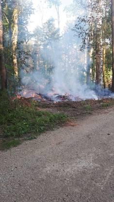 Am Sonntagabend brannte es im Wald oberhalb von Niedergösgen.