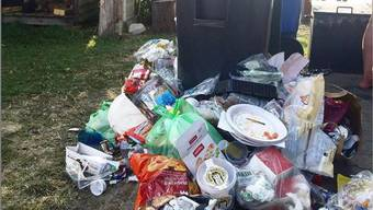 Am Wochenende führte das erhöhte Besucheraufkommen am Hallwilersee zu überfüllten Mülleimern. Viele Badegäste liessen daraufhin gleich alles liegen.