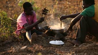 Zwei Männer in Malawi essen gekochte Mäuse. (Archivbild)