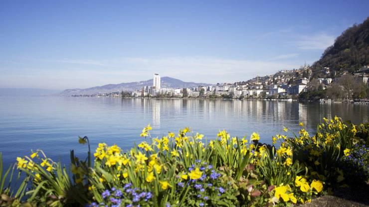 Montreux liegt direkt am Genfer See und hat knapp 26'000 Einwohner.