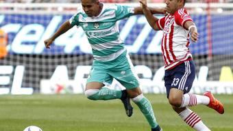Der Mexikaner Marco Fabián (rechts) soll Eintracht Frankfurt in der Rückrunde im Kampf gegen den Abstieg helfen