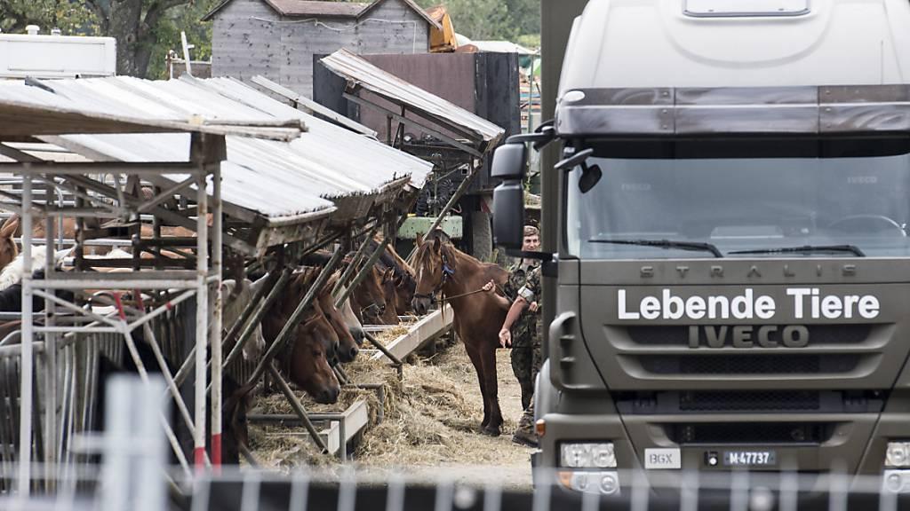 Das Militär sicherte im August 2017 die Pferde, die in Hefenhofen TG beschlagnahmt worden waren. (Archivbild)