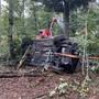 Das Auto kam von der Strasse ab und geriet in den angrenzenden Wald. Bei der Kollision starb ein Mitfahrer auf dem Rücksitz.
