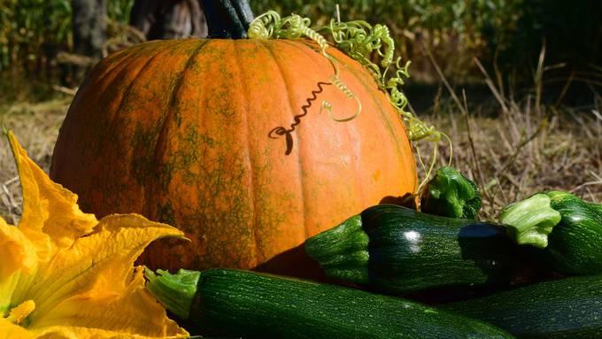 pumpkin-1666460_1920