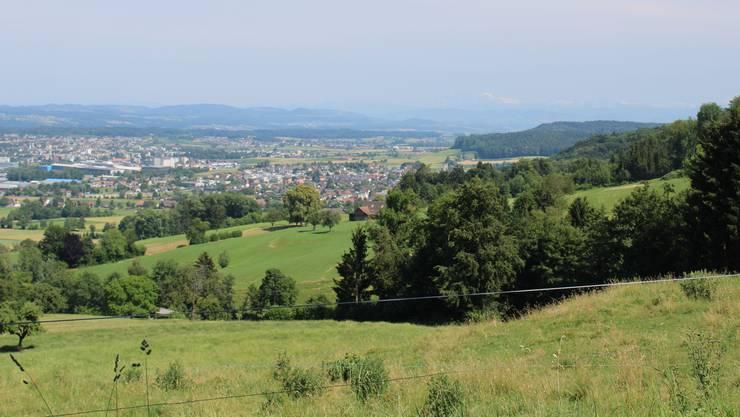 Aussichtspunkt Rietenberg, Dintikon