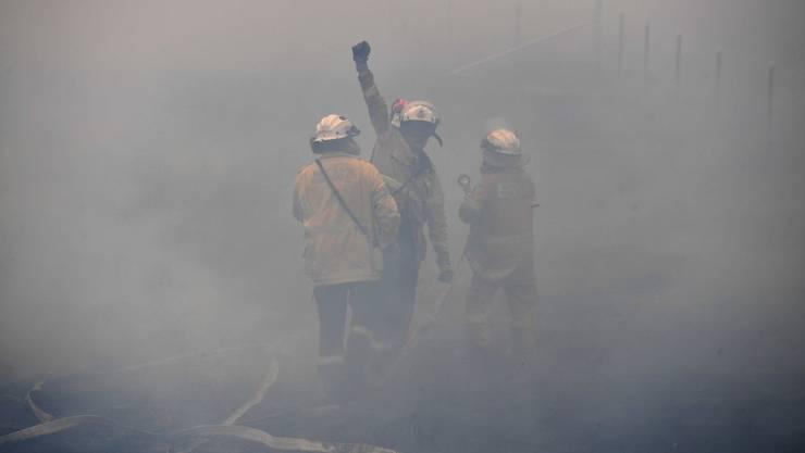 Jubel in den Flammen: Die australischen Feuerwehrleute sind seit Wochen im Dauereinsatz.