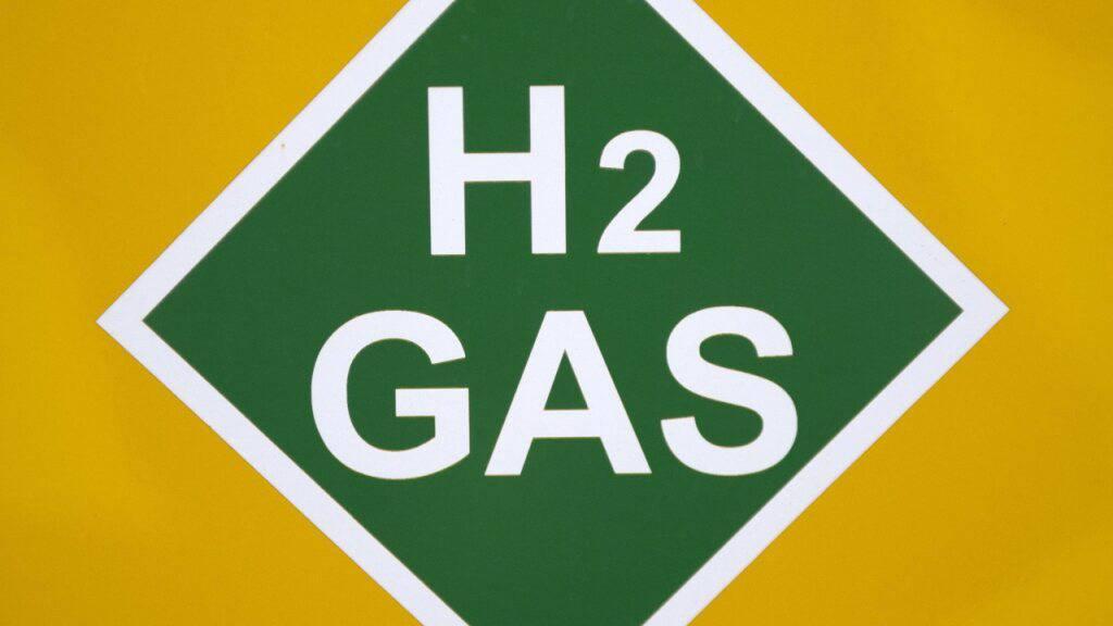 Aus Öko-Strom soll Wasserstoff produziert werden