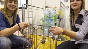 Marie Guerry (links) und Julia Vaucher präsentieren ihre Erfindung - einen Einkaufswagen mit Öffnungssystem