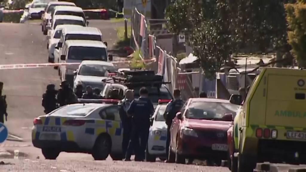 Polizist bei Verkehrskontrolle erschossen