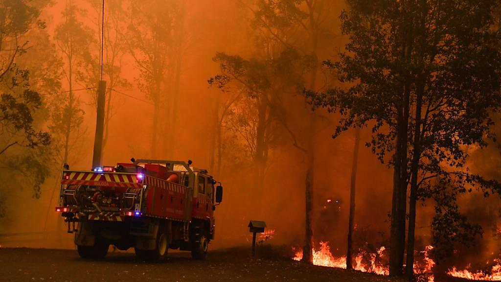Menschen im Osten Australiens fliehen vor Buschbränden