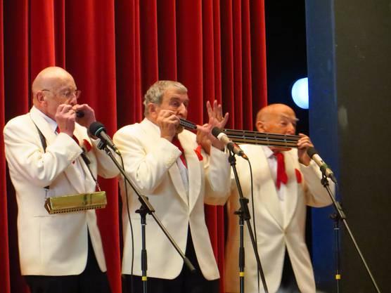 """Mundharmonika Trio """"3 Veteranos"""""""
