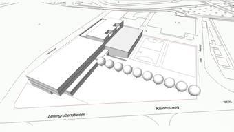 Ansicht eines möglichen Schulhausneubaus im Kleinholz. Zur Orientierung: rechts im Bild das Fussballstadion Kleinholz, oberhalb der Schulhaussportfelder ist die Stadthalle angedeutet.
