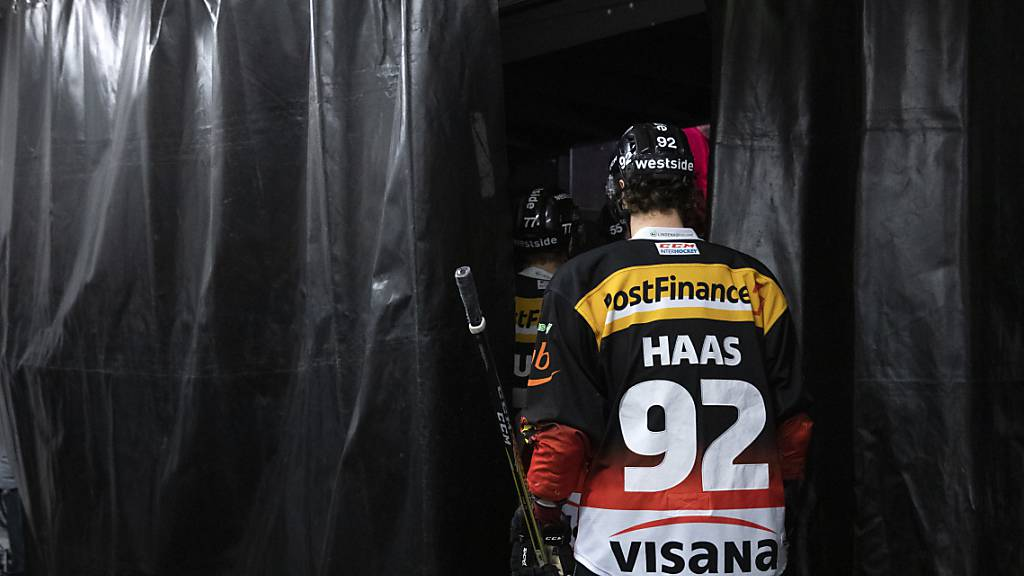 Haas spielt erste Meisterschaftspartien für den SC Bern