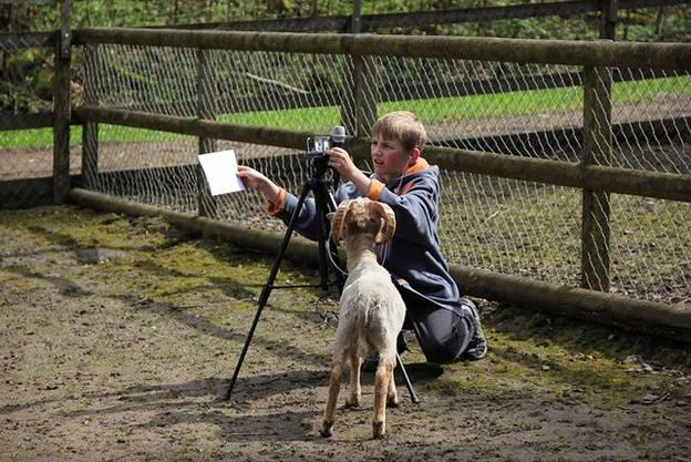 Jan konzentriert sich aufs filmen trotz neugierigem Zuschauer.