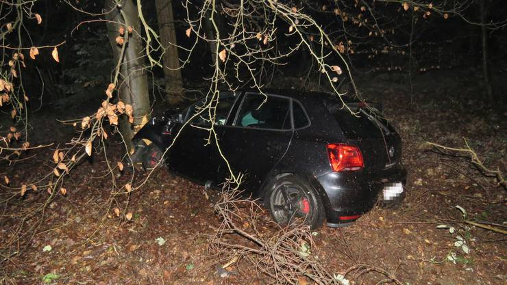 Eine Kosovarin prallte am 3. Februar mit ihrem VW in einen Baum.