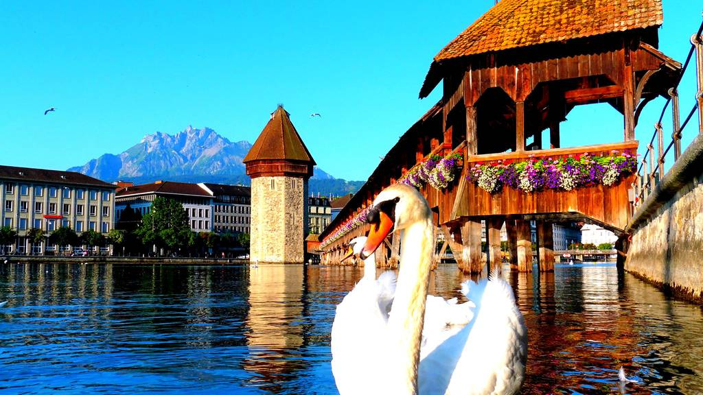 Hier zeigt sich die Stadt Luzern von ihrer schönsten Seite