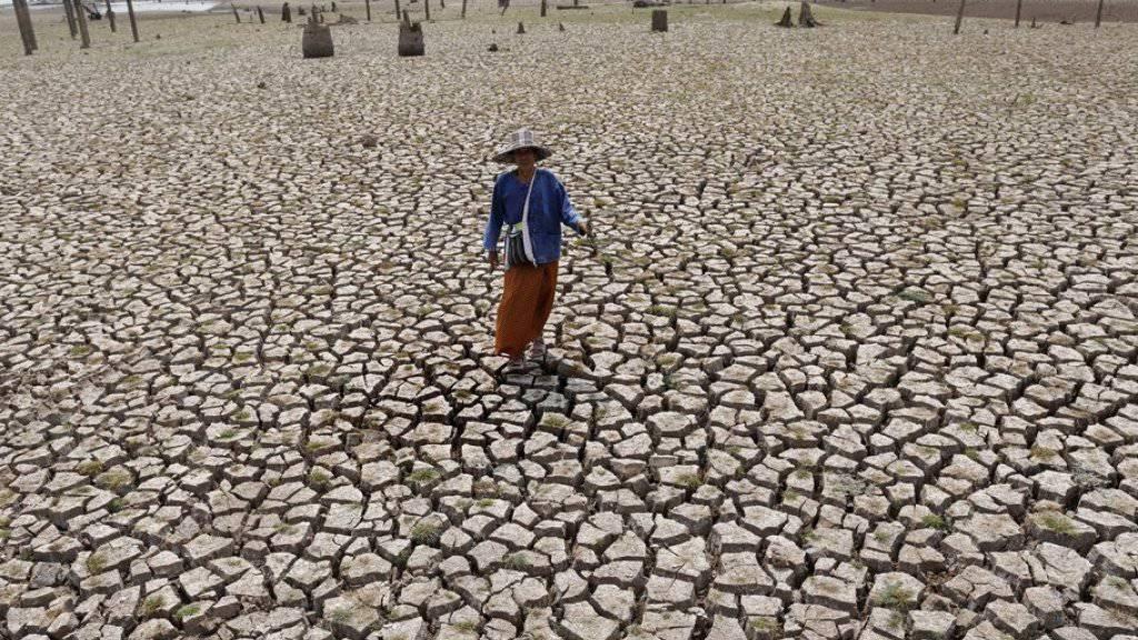 Ausgedörrter Boden in der Provinz Lampang in Nordthailand, wo das Mae-Chang-Wasserreservoir ausgetrocknet ist.