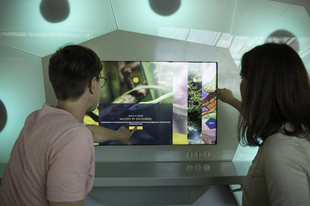 Neue interaktive Station in der Amphibien-Ausstellung im Exotarium.