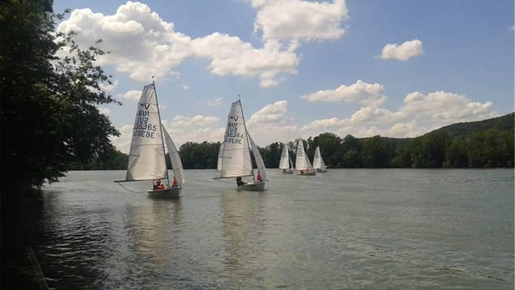 Vereins-Regatta auf dem Rhein. zvg