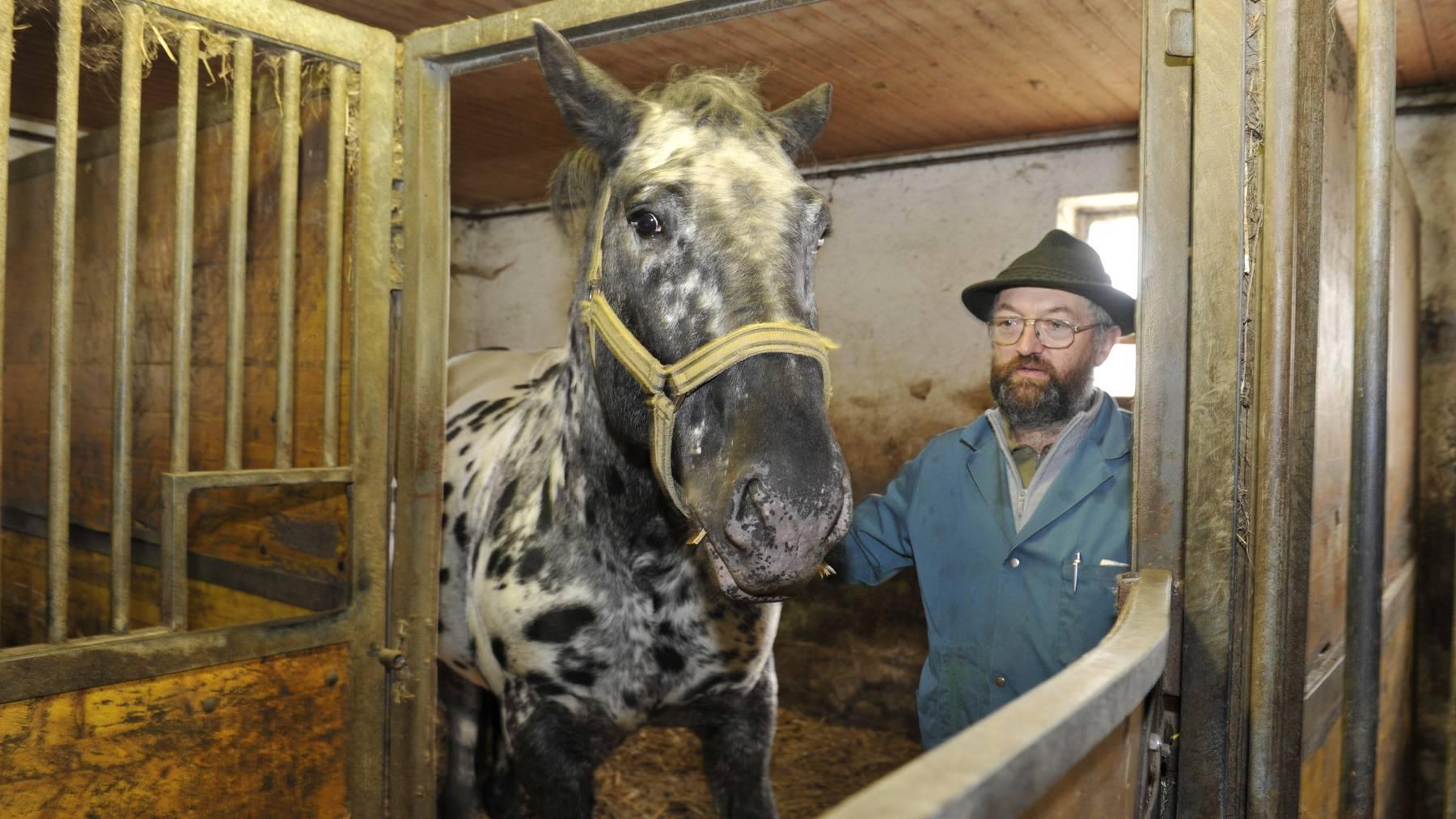 Der Thurgauer Pferdehändler wurde 2009 und 2011 zwei Mal wegen Tierquälerei und anderer Delikte rechtskräftig verurteilt.