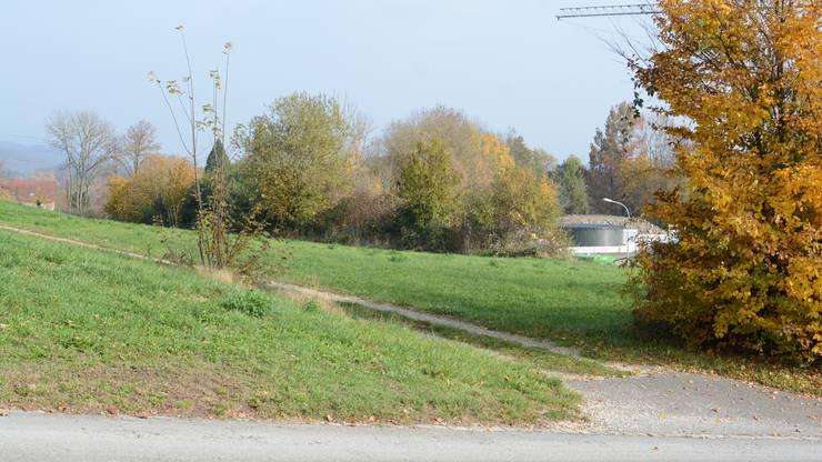 Vorschlag Hüslimatt, Küttigen, Aabach/Bibersteinerstrasse, Parzelle 7444.