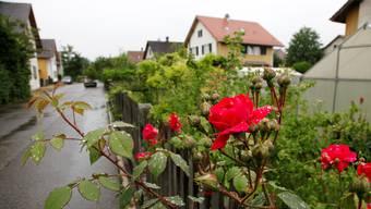 Die Böden im Elsässli-Quartier sind stark belastet und müssen saniert werden. (Archiv)