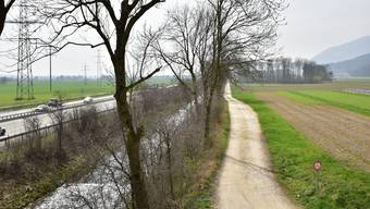 Zwischen Oensingen und Oberbuchsiten soll die entlang der A1 fliessende Dünnern revitalisiert und der Hochwasserschutz verbessert werden.