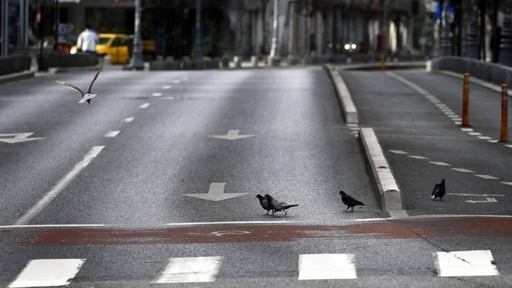 Leere Strassen bedeuten auch weniger CO2-Ausstösse durch Individualverkehr. Aber nützt das langfristig dem Weltklima?