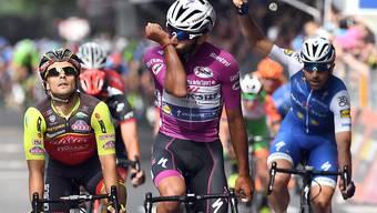Wieder gab es am Giro d'Italia kein Vorbeikommen an Fernando Gaviria (Mitte)