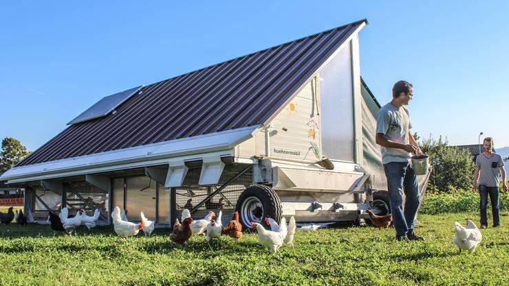 Die Besitzer des Hühnermobils, die Brüder Christoph (links) und Andi Hagenbuch, füttern ihre Hühner.