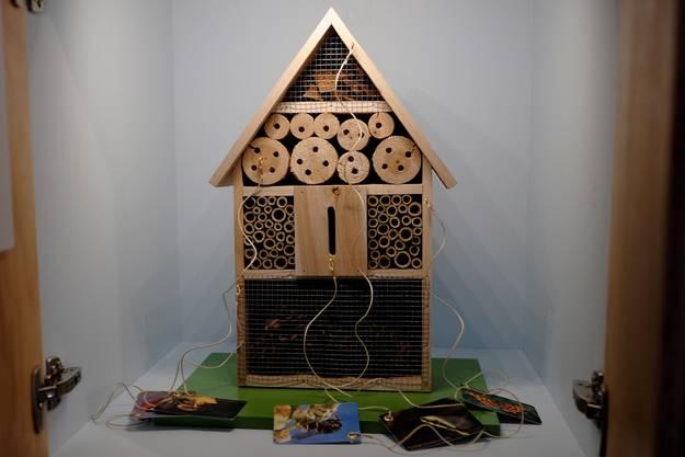 Im Insektenhotel finden viele Krabbler ein Zuhause.