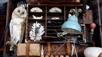 Eine exquisitere Trouvaille findet man in Solothurns Schaufenstern nicht