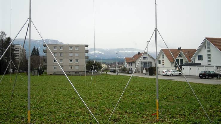 Im Vordergrund die Profilstangen auf dem Baufeld Blumenfeld. Im Hintergrund in der Bildmitte ist die Wiese am Narzissenweg zu erkennen, auf der drei Bauten mit insgesamt 44 Wohnungen möglich sind.