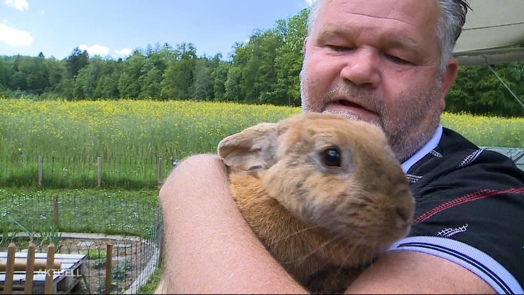 Happy End: Vier kleine Kaninchen wurden entsorgt – nun haben sie ein neues Zuhause