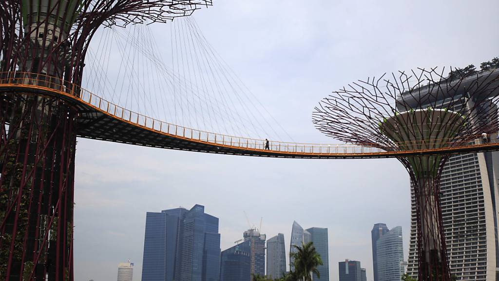 In Singapur läuft die Wirtschaft aufgrund der Coronavirus-Krise schlecht - keine Touristen, keine Umsteiger am Flughafen und rückläufige Handelstätigkeiten. (Symbolbild)