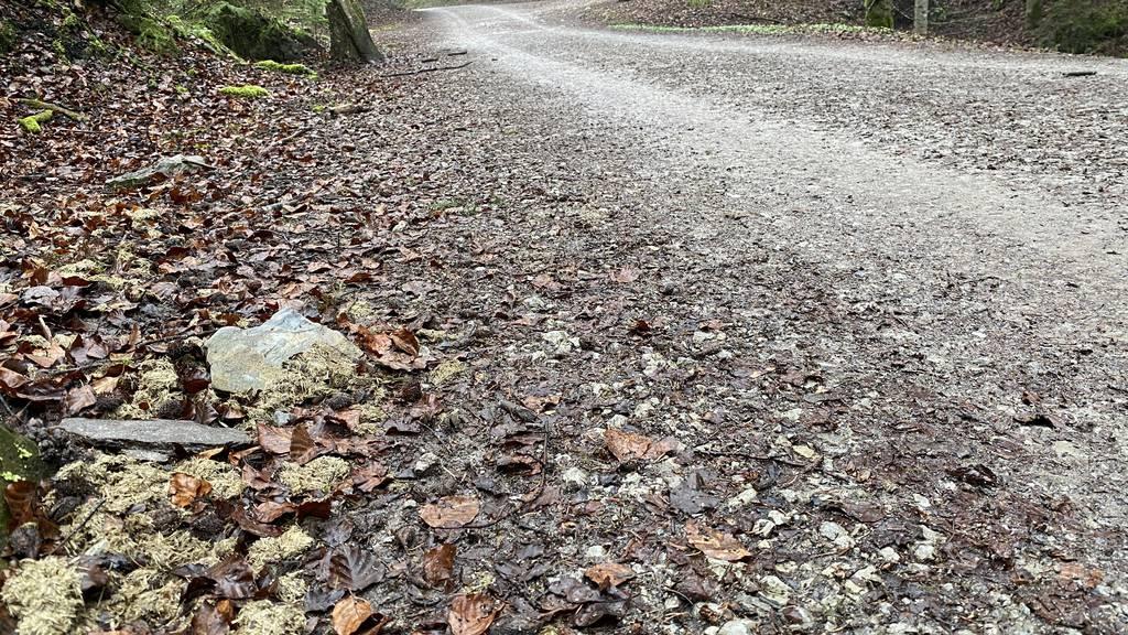 Reitverbot Kernwald Räuberwald Obwalden Rossbollen Pferdeäpfel