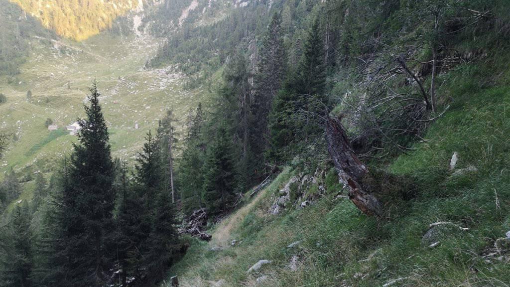 Gleich vier Personen sind am Wochenende in den Bergen gestorben: eine 30-jährige Alpinistin in Vicosoprano GR, ein 66-jähriger Wanderer in Roveredo GR und zwei Alpinisten beim Aufstieg zum Dent Blanche VS. (Symbolbild Roveredo)